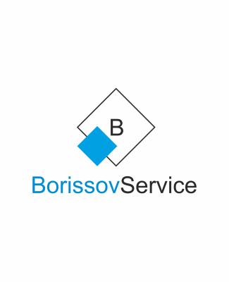 Online-Auftritt für Express- und Kurierdienst – BorissovService